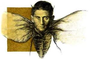 Kafka metamorfoseado